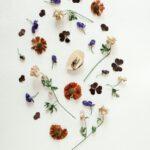 Hoe onderhoud ik mijn droogbloemen?